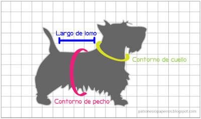 tomar las medidas al perro