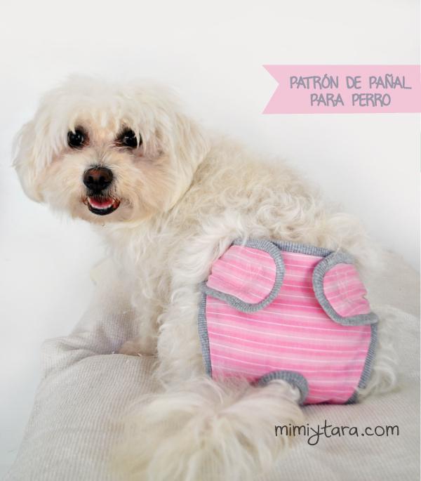 Patron de pañal para perro | Mimi y Tara