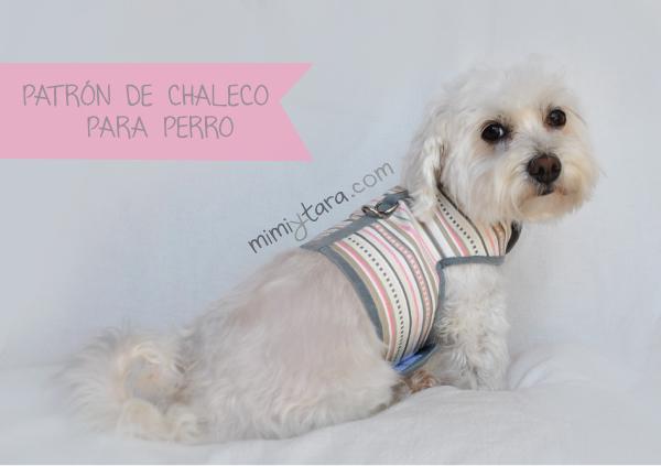 Patrón de Chaleco para Perro Talla XL | Mimi y Tara