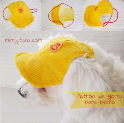 Patrones de gorra para perro | Mimi y Tara
